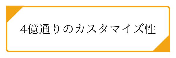 4億通りのカスタマイズ性! (2)
